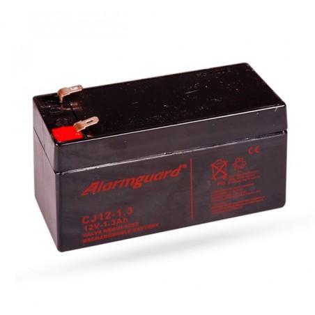Vervanger Oplaadbare accu (SA214)